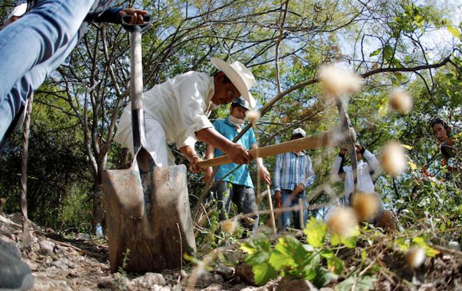 Des habitants de la région d'Iguala recherchent des restes humains de parents disparus. Novembre 2014. © Reuters