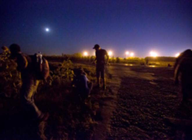 Nuit étoilée près de la frontière hongroise © Valerio Muscella