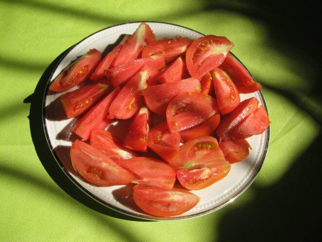 tomates coupées © elisa