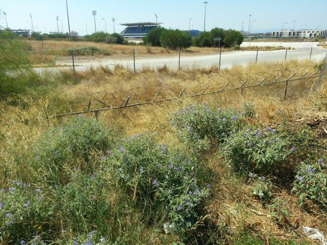 Elleniko: des terrains à l'abandon et d'anciennes installations olympiques