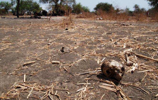 A Likuangole, un crâne humain parmi les débris © VD