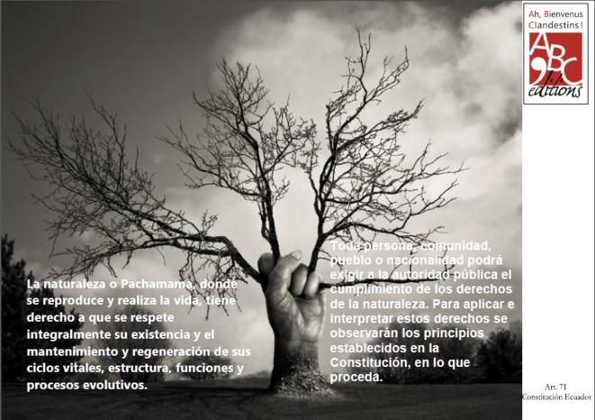 Artículo 71 de la Constitución de Ecuador © ABC'éditions Ah Bienvenus Clandestins !