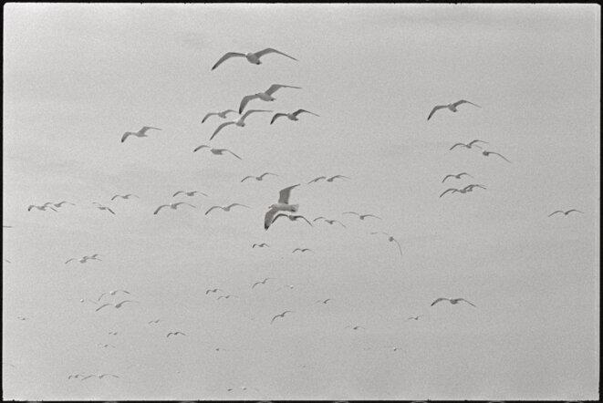 Pas-de Calais © Henri Cartier-Bresson