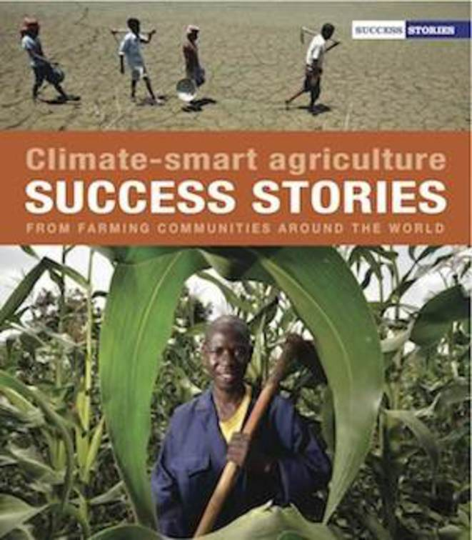 Les success stories de l'agriculture intelligente face au climat !