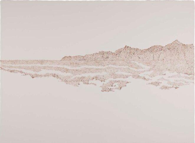 Albert Palma, dessin, 2014, 57×76 cm