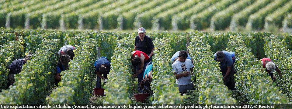Achats de pesticides: cette France toxique