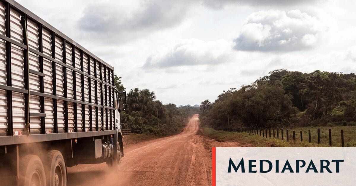 Comment le régime militaire brésilien a imposé sa doctrine paranoïaque en Amazonie