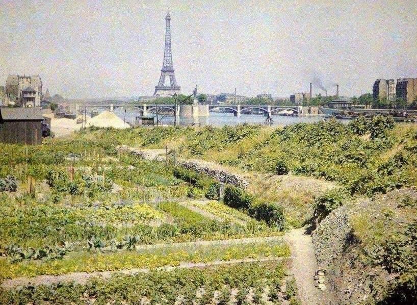 Photo des Jardins potagers, quai d'Auteuil (actuel quai Louis Blériot) . en face le pont de Grenelle et la statue de la Liberté