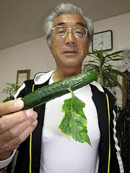 concombre mutant