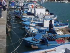 Crotone : un port de pêche actif